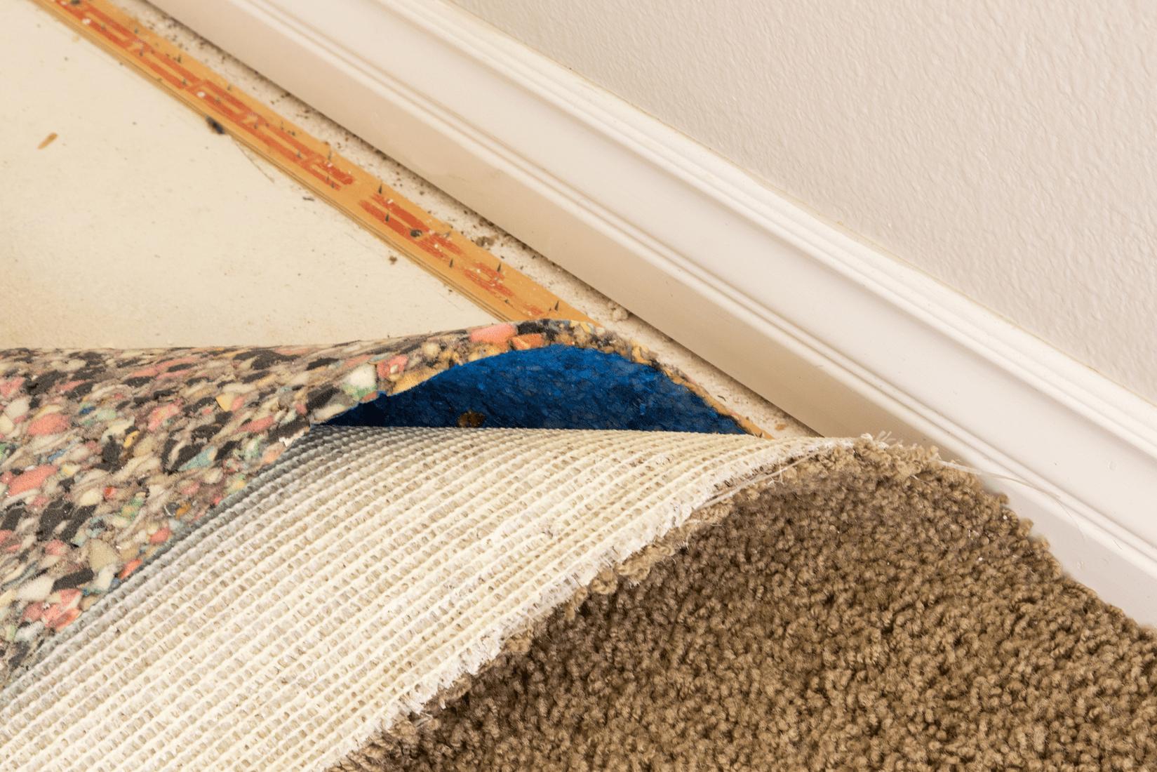 Best Carpet Padding, Pulled Back Carpet and Padding