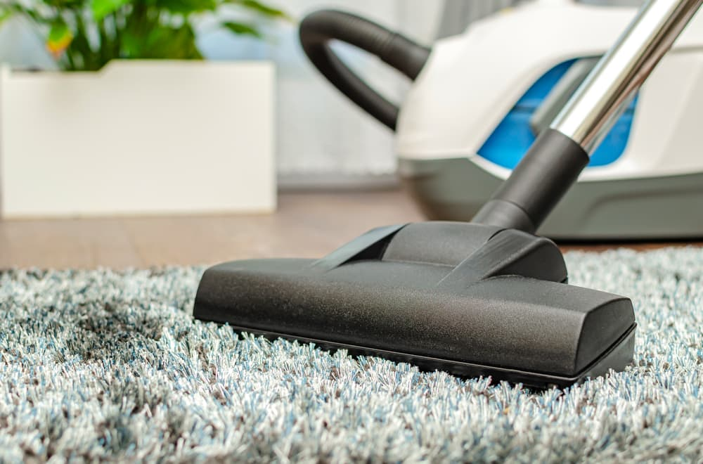 High Pile Carpet with one of the best vacuum for high pile carpet cleaning it