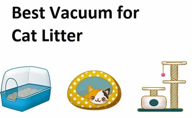 3 Best Vacuums For Cat Litter 2019 Aka Poop Gravel