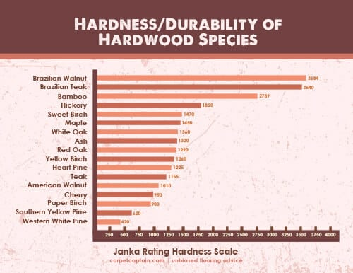 ranking of wood species by durability and hardness